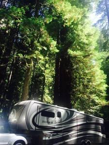 2014 Redwood RV  38GK