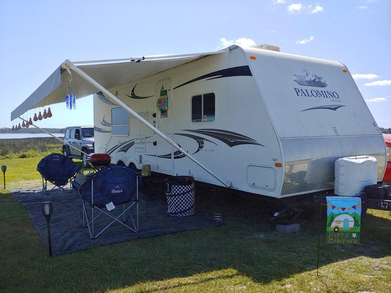 2011 Palomino Thoroughbred T245